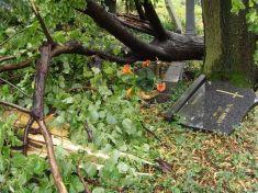 Veterná búrka zo dňa 18. 7. 2011